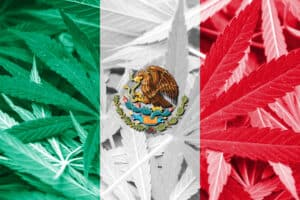 Mexican legalization
